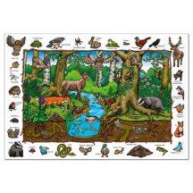 Fedezd fel az erdőt! 150darabos - OR254
