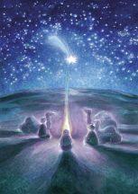 Karácsonyi csillag (63-030)